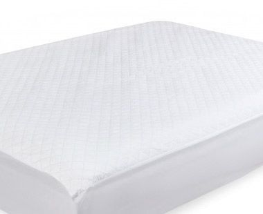 Sealy  Dry Pad Protector Q.S.